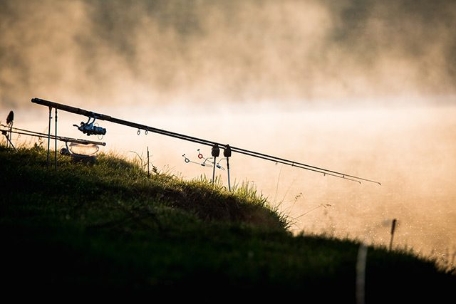 Fotografujeme sport - světlo