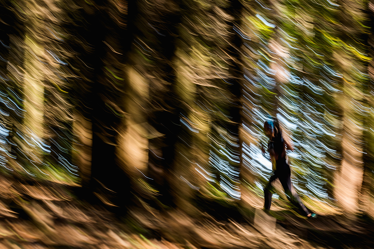 Kateřinický trail 2019