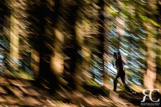 2019 katerinicky trail (2)